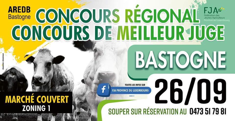 Concours régional de meilleur juge le 26/09/ à Bastogne