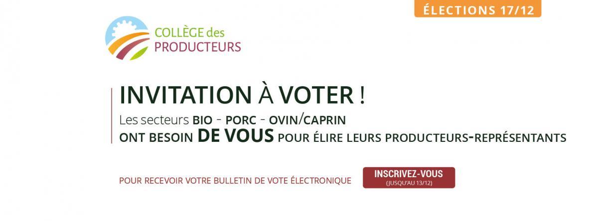 Les élections du College des Producteurs approchent pour les secteurs Ovin-Caprin, Porc et Bio
