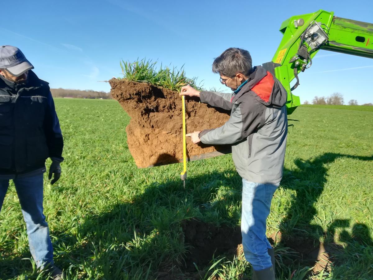 18 mars 2021 - Formation pratique aux méthodes de  diagnostic de l'état structural du sol