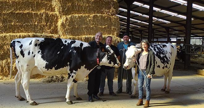CONTRE LE COVID-19. Les vaches de l'ALPA à la pointe de de la recherche