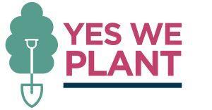 « Yes We Plant » : un site internet et des aides renforcées pour la nouvelle saison de plantation d'arbres et de haies